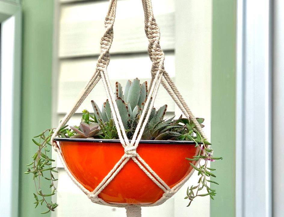 Orange enamel bowl filled with colourful succulents & macrame hanger