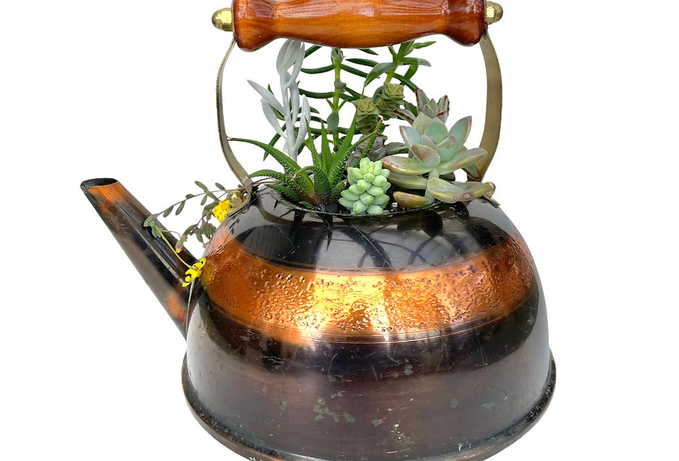 A stunning old copper kettle filled with a variety of succulents