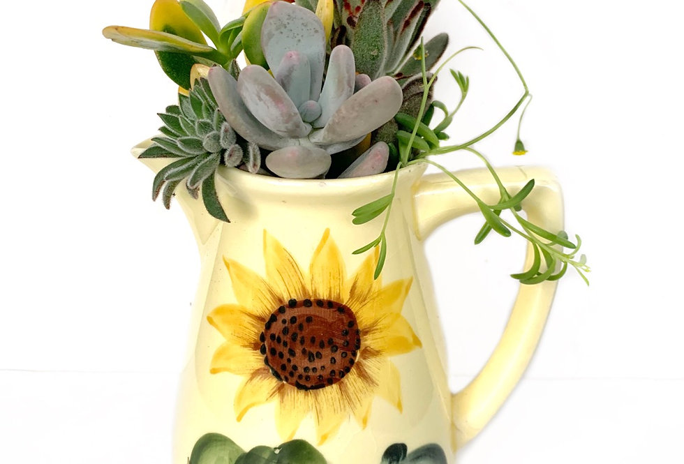 A beautiful lemon yellow sunflower design jug with a selection of succulents