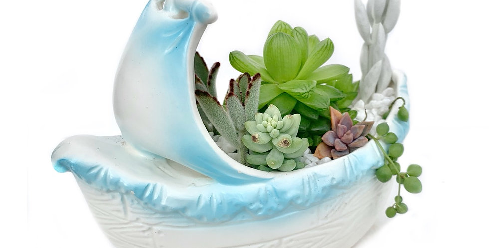 A gorgeous Japanese design boat filled with colourful succulents