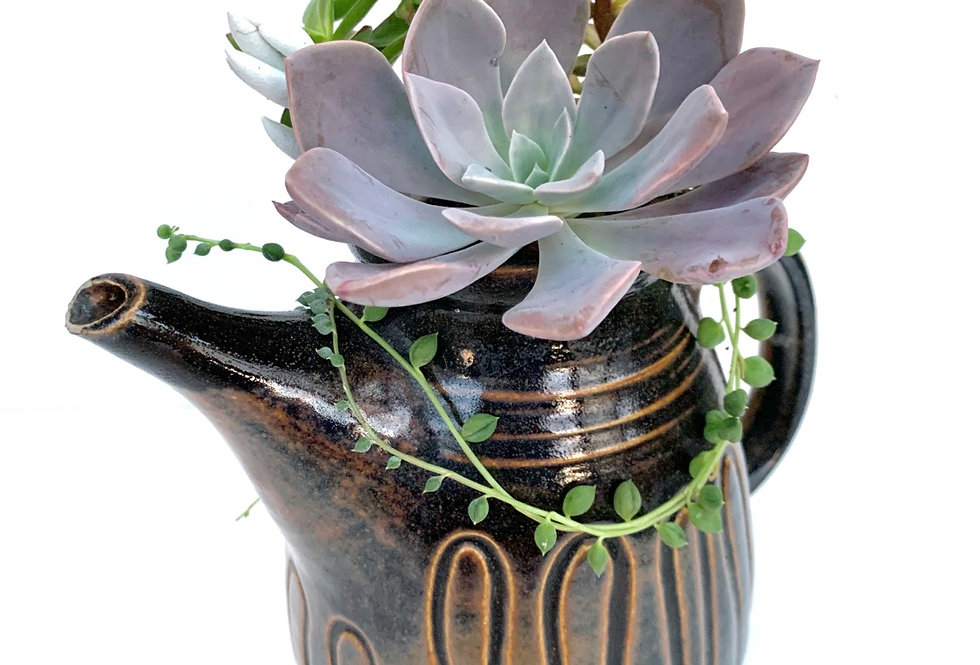 A gorgeous design teapot filled with colourful and beautiful succulents