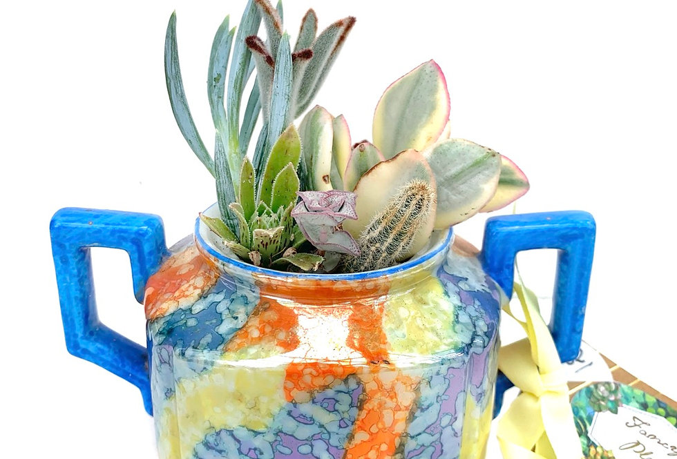 A stunning glazed sugar pot filled with colourful succulents