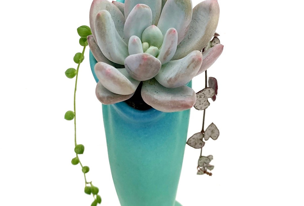 A stunning vintage 'Van Briggle' vase with colourful succulents