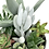 Thumbnail: A lovely vintage white enamel teapot filled with colourful succulents