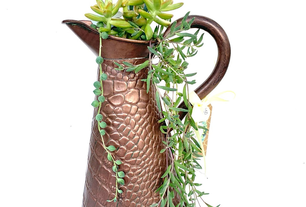 Beautiful textured copper jug with a selection of succulents