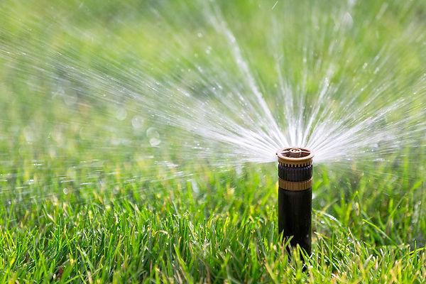 Rocky Mountain Irrigation System