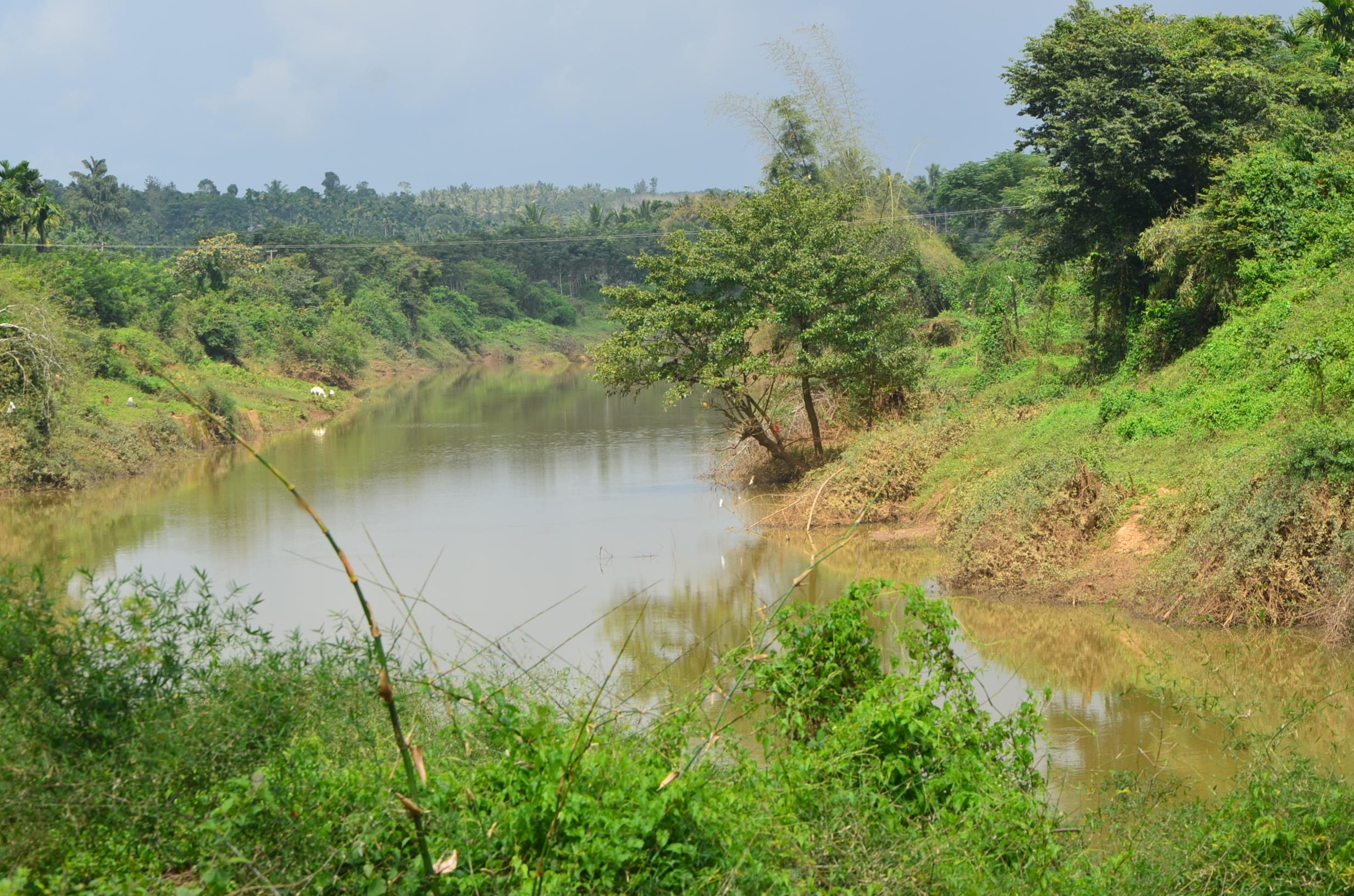Panamaram Wayanad Site  (15)