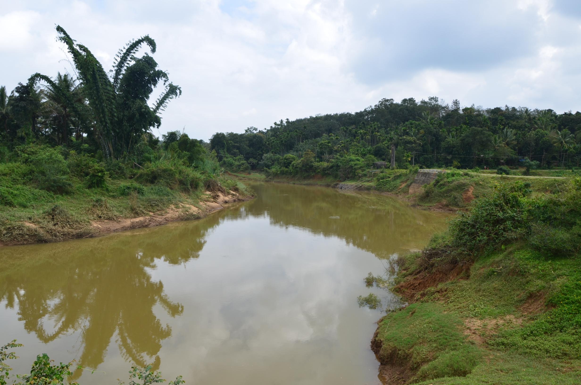 Panamaram Wayanad Site  (13)