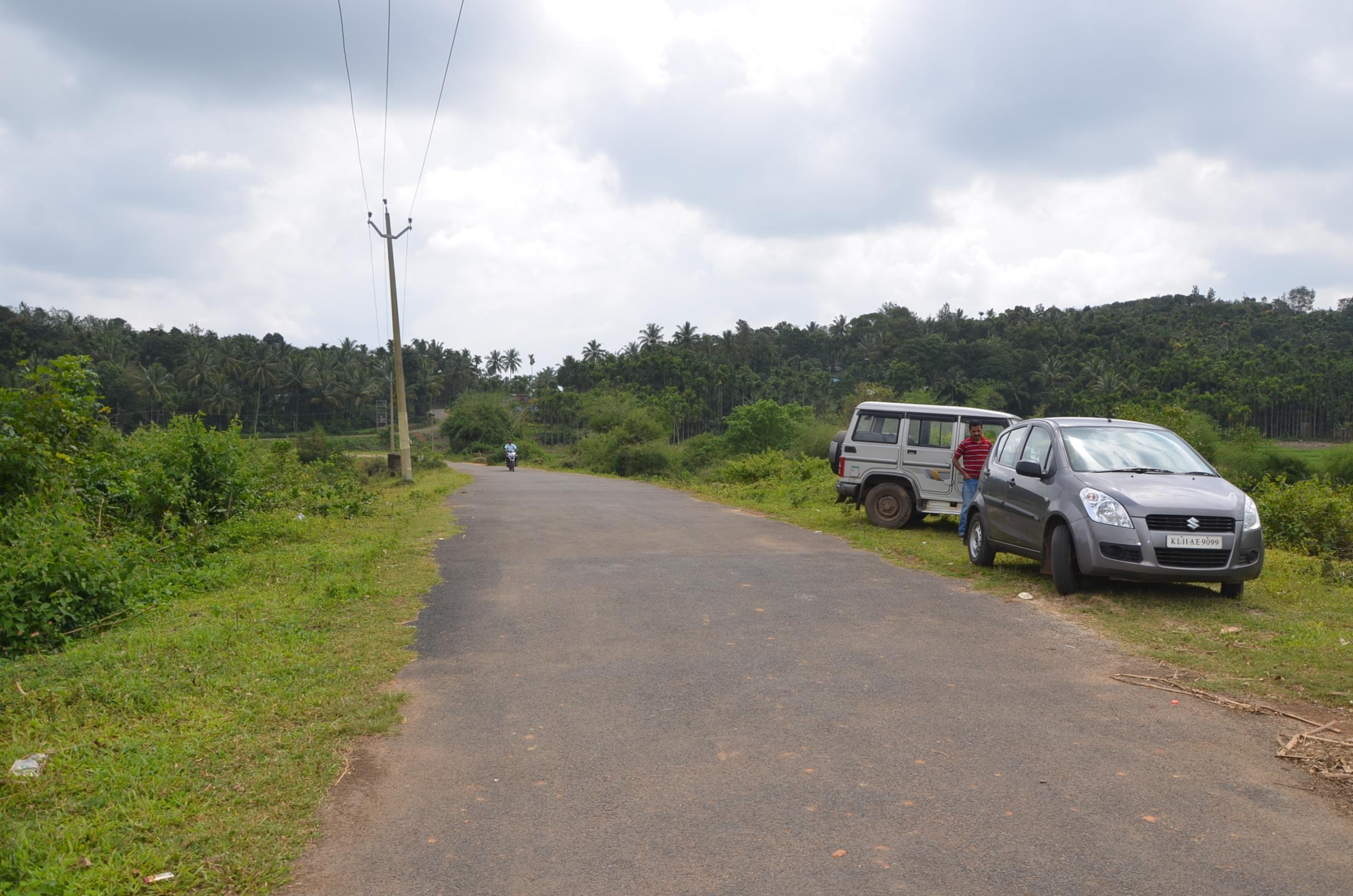 Panamaram Wayanad Site  (18)