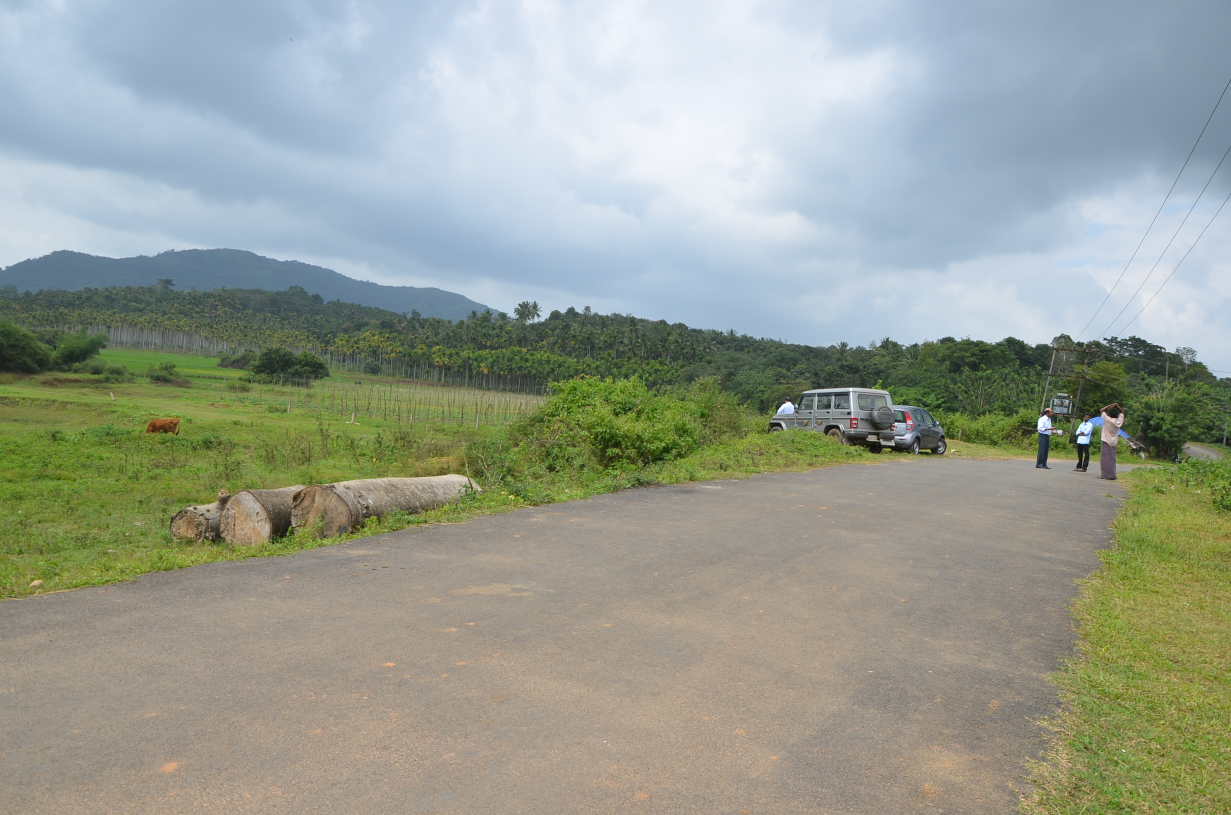 Panamaram Wayanad Site  (17)
