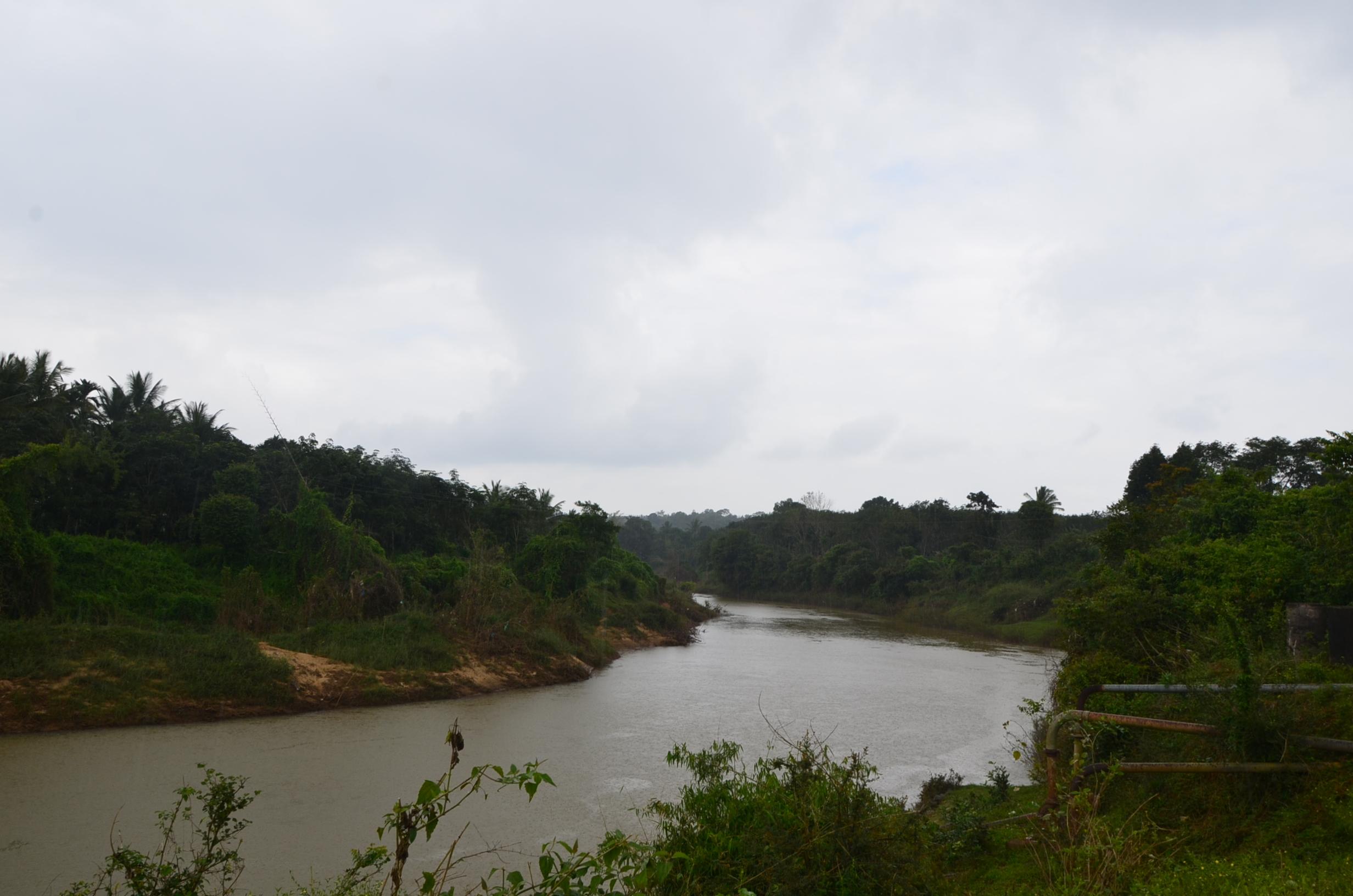Panamaram Wayanad Site  (10)