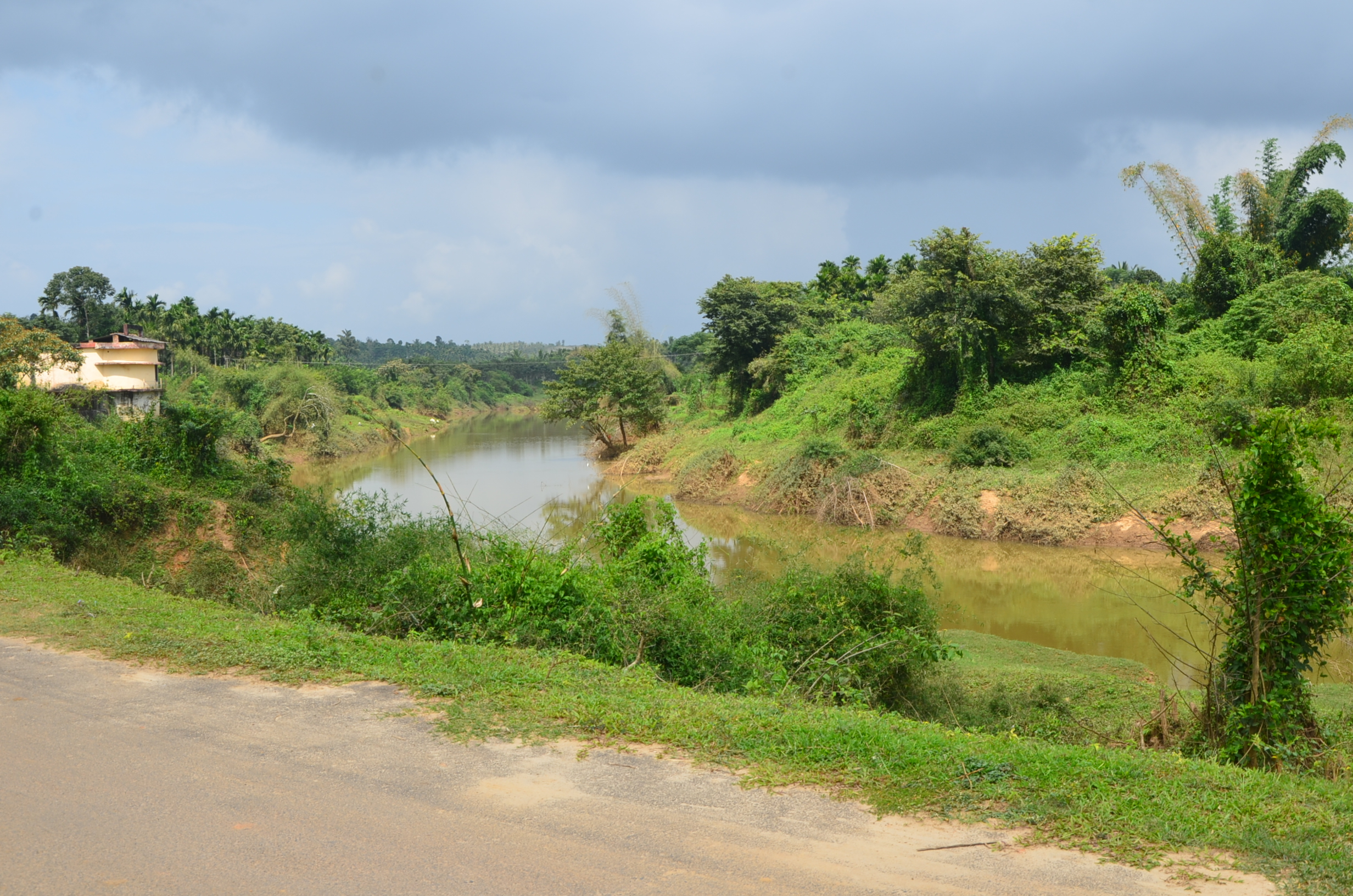 Panamaram Wayanad Site  (14)