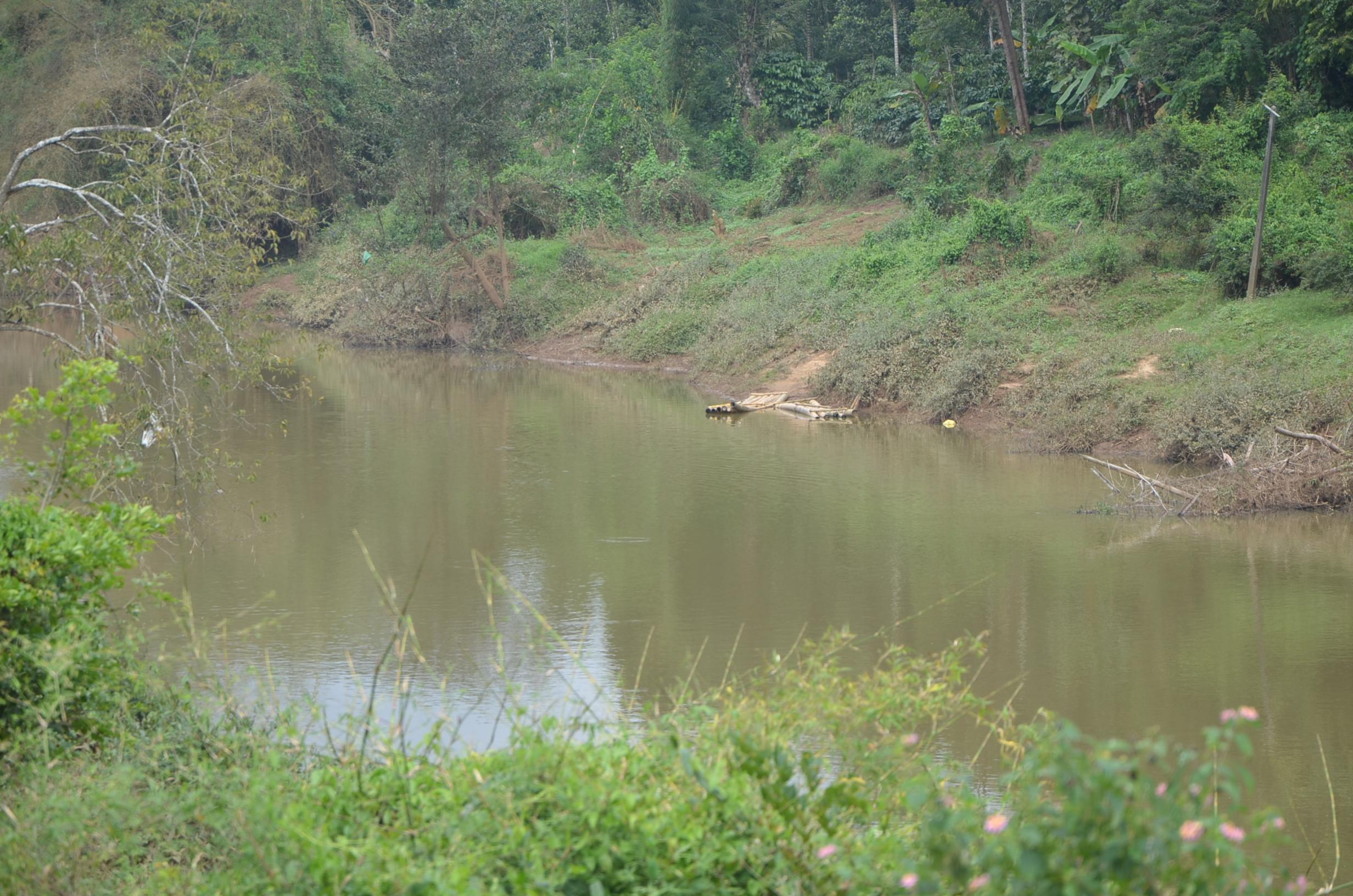 Panamaram Wayanad Site  (11)