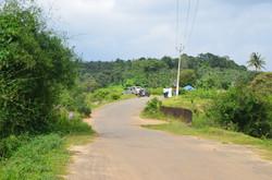 Panamaram Wayanad Site  (16)