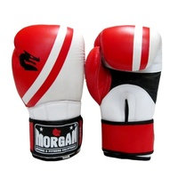 MORGAN V2 PROFESSIONAL LEATHER BOXING GLOVES (10 -16OZ)