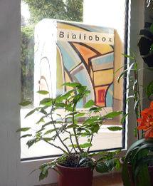 Bibliobox-Velke-Mezirici-02.jpg