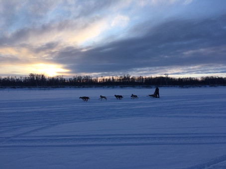 Bethel Sprint Mushers Club Announces First Race of the Season