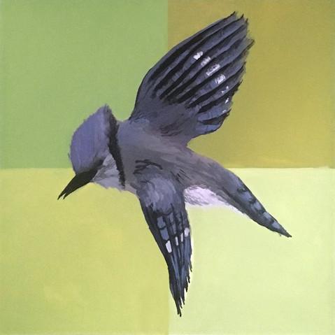 bird-watercolor.JPG