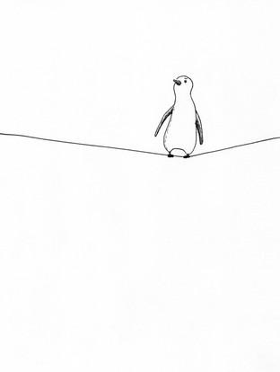 penguin-web.jpg