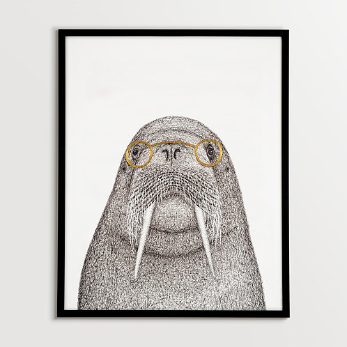 Walrus with Spectacles
