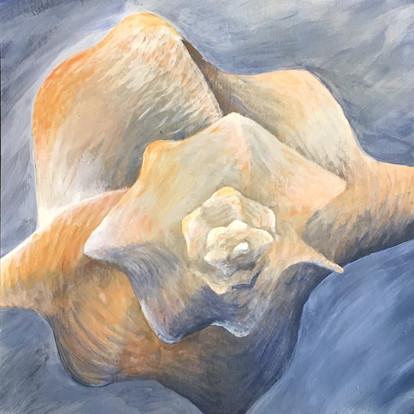 shell-watercolor.JPG