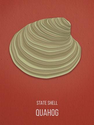 quahog shell.jpg
