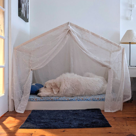 Dog bed with bedding
