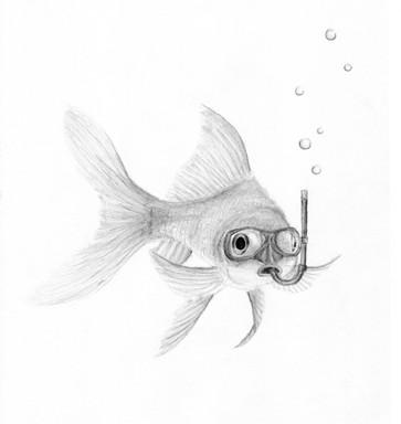 fish-web.jpg