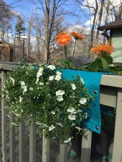 blue fabric over the railing planter