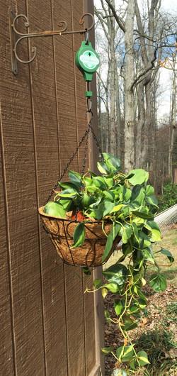 hanging basket plant pulley