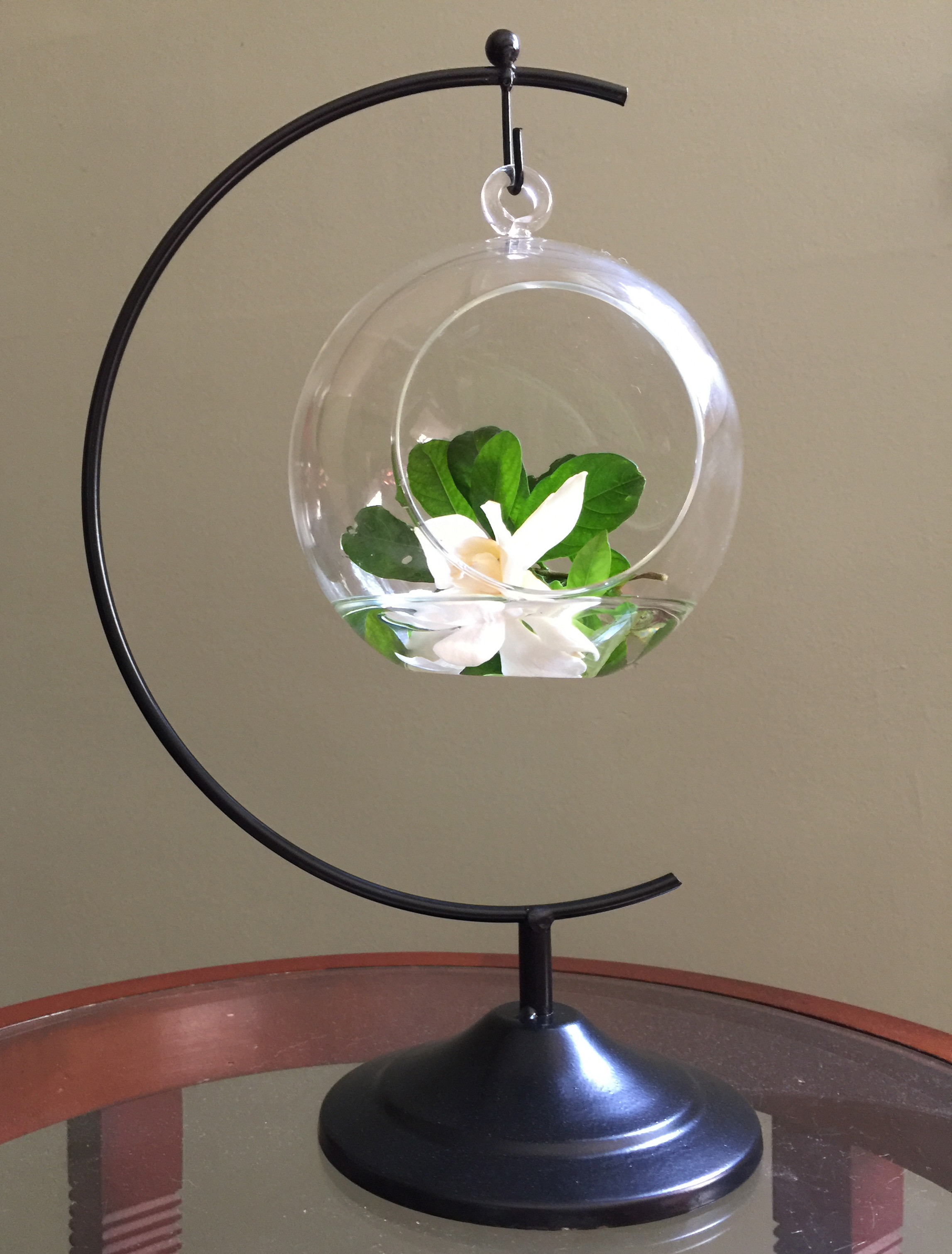 half moon terrarium and hook