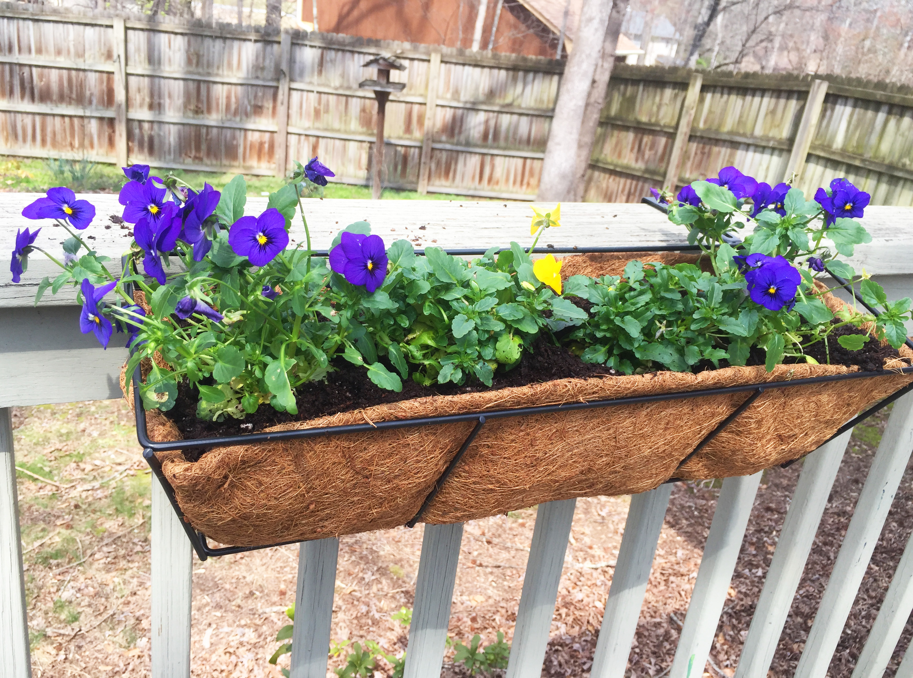window box coco liner