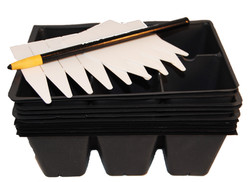 seed trays with tags n pencil