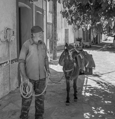 Mule Man, Kallithera, Greece
