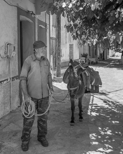 Mule Man, Kallithera, Greece