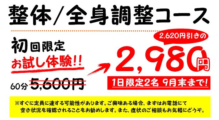 初回限定(全身seitai).png