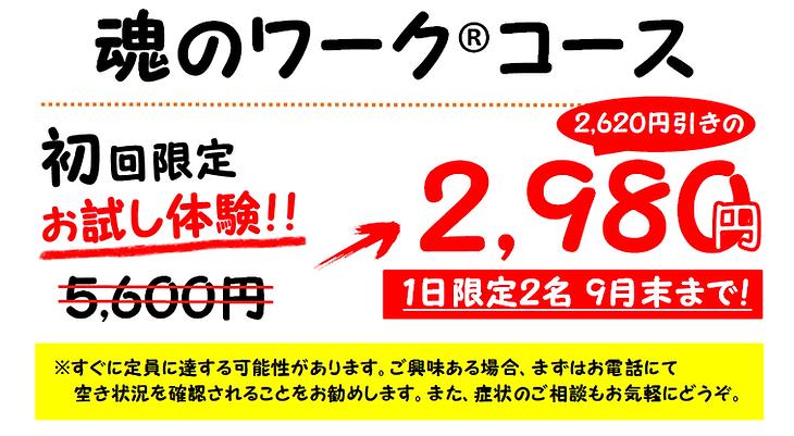 初回限定(魂ワーク).png
