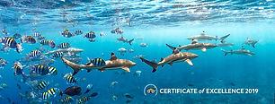 Manta Ray Bay Resort and Yap Divers Agod