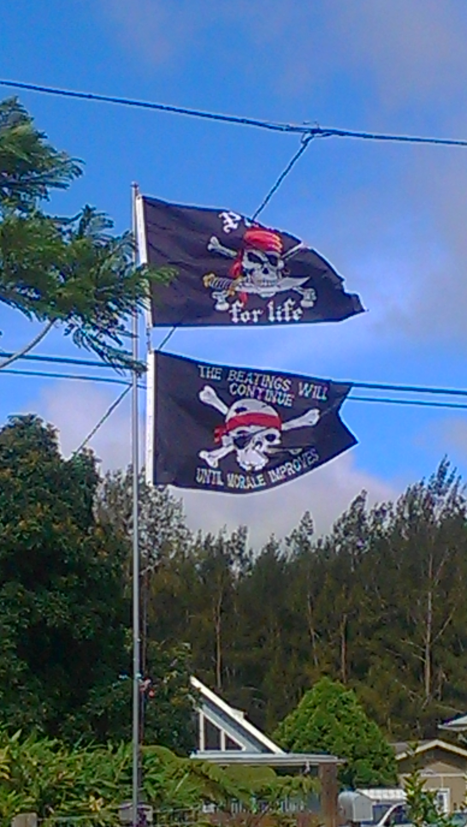 Pirate flags big island hawaii