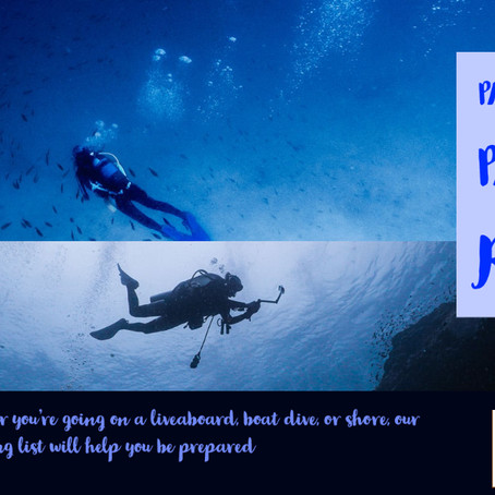 Our Recommended Packing List for Diving