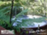Omau Settlers Lodge Motel, Westport, New