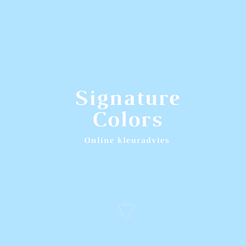 Online kleuradvies