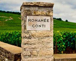 Visit exclusive vineyards Romanee Conti