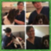 murphy collage.jpg