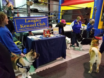 LKC Members and their pups supporting 4 Paws Animal Rescue hosted by Body By D Gym
