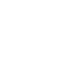 holisticdenim-logoAsset%202%404x_edited.