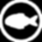Fish1Asset 1_3x.png