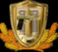 лого ТТ __.png