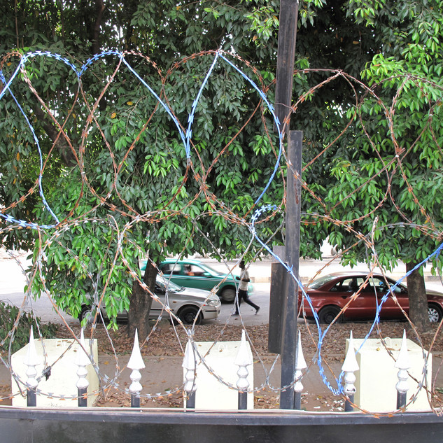 Paint Barbed wire