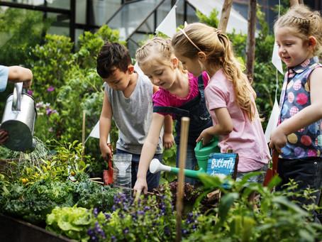 Simple Quick Gardening With Children
